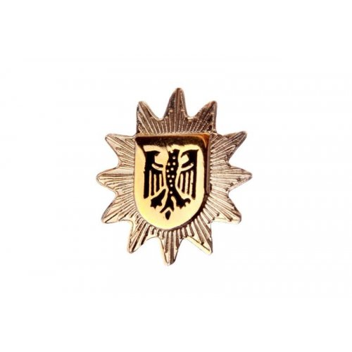 Pin Polizeistern Bundespolizei silber